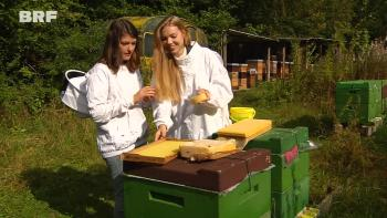 Naturkosmetik und Bienenschutz: Start-up in Rocherath