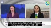 Big dog steals the spotlight during live Russian TV weather report